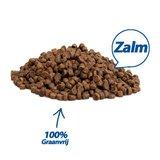 Premium Kat Graanvrij Zalm - 2 kg_